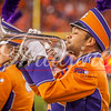 clemson-tiger-band-natty-2016-805