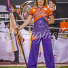 clemson-tiger-band-natty-2016-780