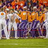 clemson-tiger-band-natty-2016-724