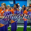 clemson-tiger-band-natty-2016-402