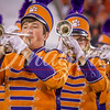 clemson-tiger-band-natty-2016-774