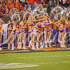 clemson-tiger-band-natty-2016-709