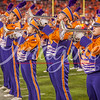 clemson-tiger-band-natty-2016-804