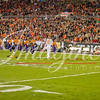 clemson-tiger-band-natty-2016-747