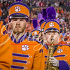 clemson-tiger-band-natty-2016-788