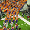clemson-tiger-band-natty-2016-379