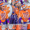 clemson-tiger-band-natty-2016-555