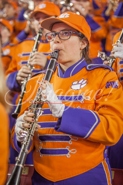 clemson-tiger-band-natty-2016-685