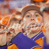 clemson-tiger-band-natty-2016-683