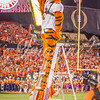 clemson-tiger-band-natty-2016-711