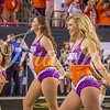 clemson-tiger-band-natty-2016-786
