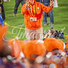 clemson-tiger-band-natty-2016-704