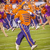 clemson-tiger-band-natty-2016-717