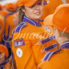 clemson-tiger-band-natty-2016-696