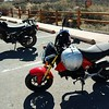 Tiny bikes: TW200 and a Grom for two-up