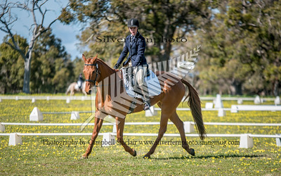 Alcoa International Horse Trials CIC