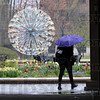 MET041116 rain umbrella
