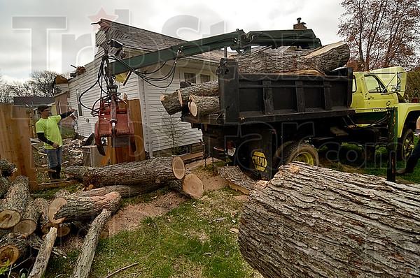MET 040416 TREES WATTON