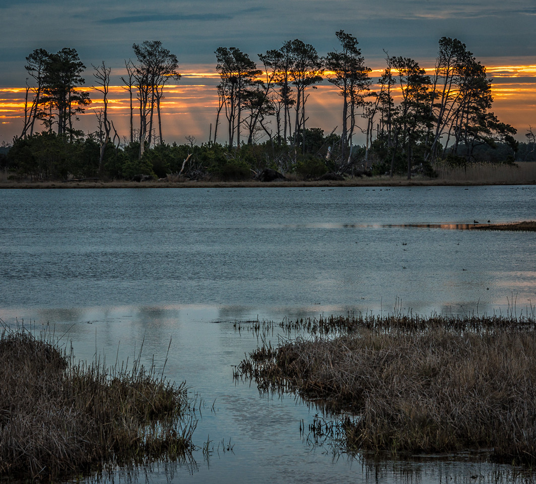 Salt Marsh Sunrise