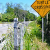 MET 080716 TURTLE CROSSING SIGN