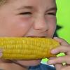 MET080416 corn etling