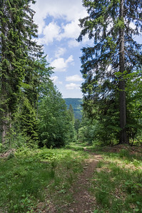 On the path towards Großer Arber