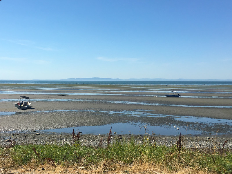 One very, very low tide, Birch Bay