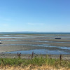 One very, very low tide, Birch Bay