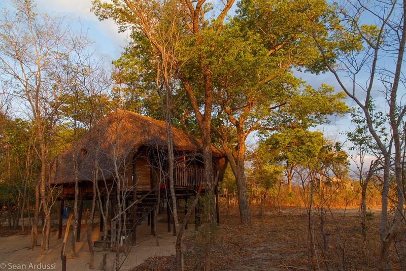 Miombo Lodge Treehouse Accomodation, Hwange National Park, Zimbabwe