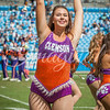clemson-tiger-band-panthers-2016-21