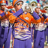 clemson-tiger-band-panthers-2016-85