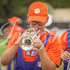 clemson-tiger-band-panthers-2016-6