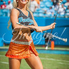 clemson-tiger-band-panthers-2016-31