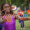 clemson-tiger-band-panthers-2016-11