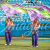 clemson-tiger-band-panthers-2016-90