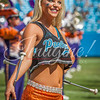 clemson-tiger-band-panthers-2016-98