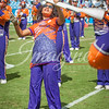 clemson-tiger-band-panthers-2016-16