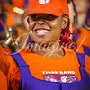 clemson-tiger-band-fsu-2016-179