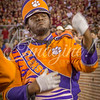 clemson-tiger-band-fsu-2016-99