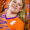 clemson-tiger-band-fsu-2016-90