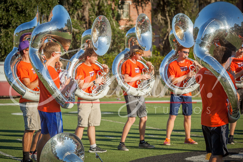 clemson-tiger-band-fsu-2016-1
