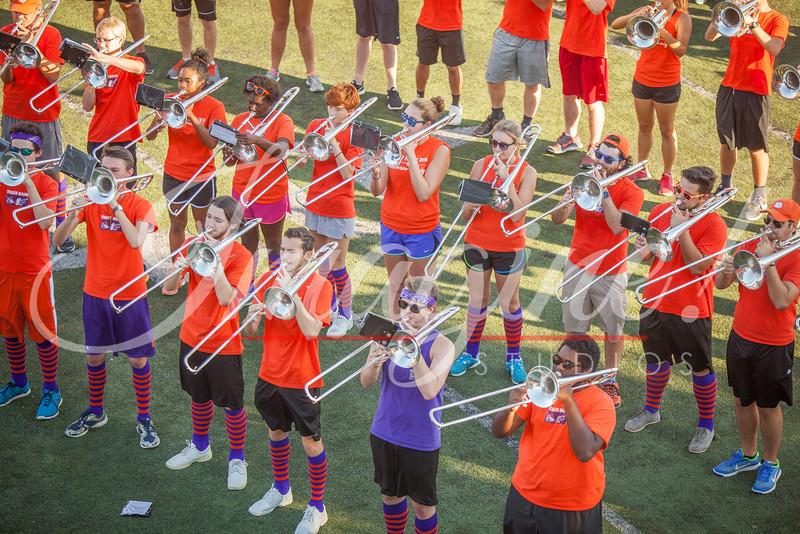 clemson-tiger-band-fsu-2016-9