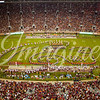 clemson-tiger-band-fsu-2016-141