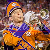 clemson-tiger-band-fsu-2016-163