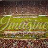 clemson-tiger-band-fsu-2016-139