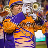 clemson-tiger-band-fsu-2016-164