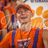 clemson-tiger-band-gatech-2016-36
