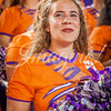 clemson-tiger-band-gatech-2016-22