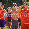 clemson-tiger-band-louisville-2016-196