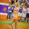 clemson-tiger-band-louisville-2016-330